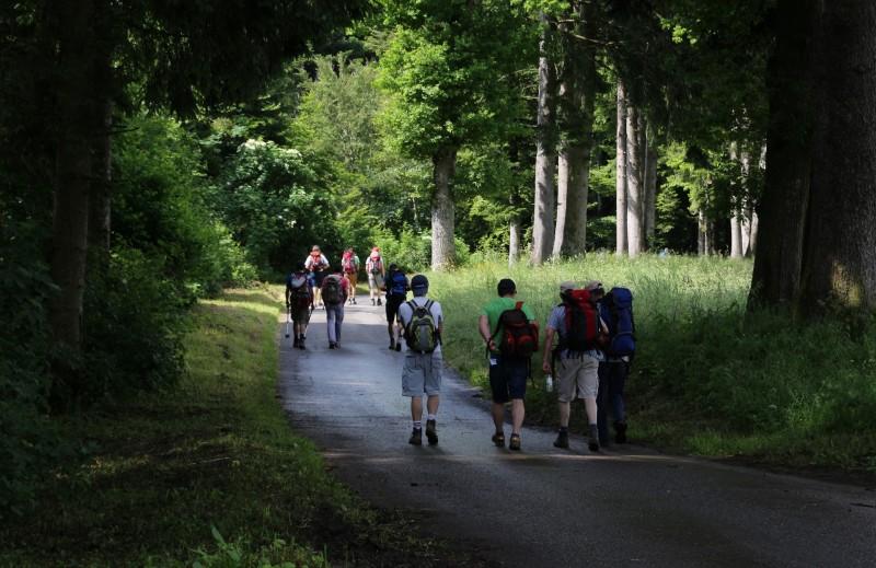 Pèlerinage des pères 2016, 3 : à la découverte des forêts du Gibloux.