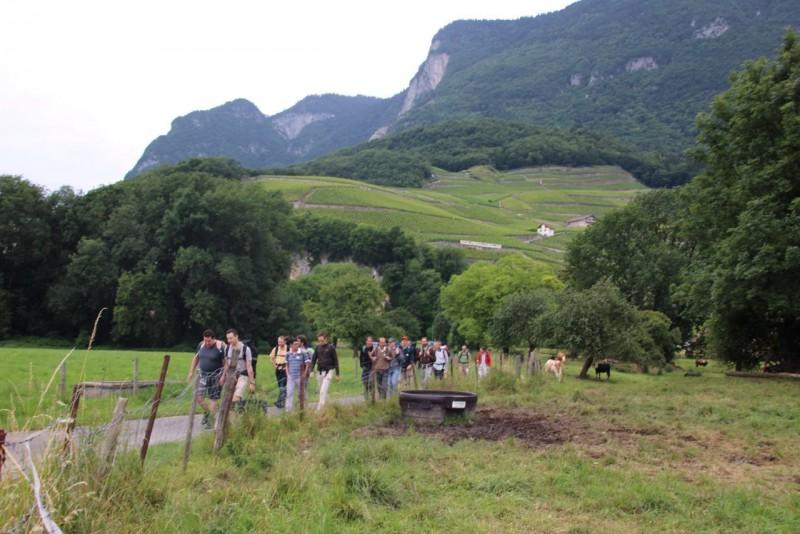 Pèlerinage des pères 2015, 2 : découverte des chemins du Chablais vaudois.