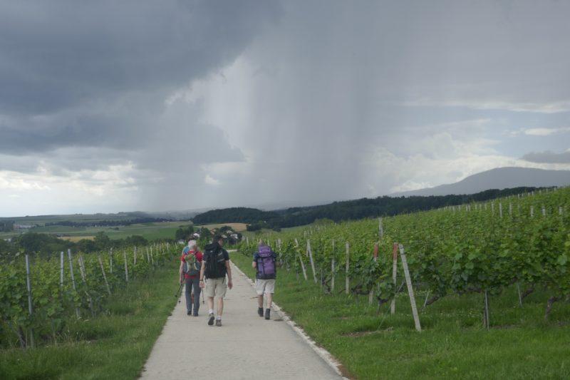 7. Voici la pluie qui vient à notre rencontre