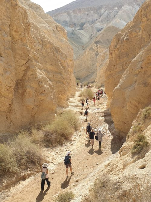 le chemin de Nahal Hawarim